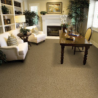 Carpet Gallery - Home Office