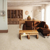 Carpet Gallery - Living Room